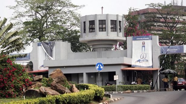 Is working and studying in the University of Ibadan possible?