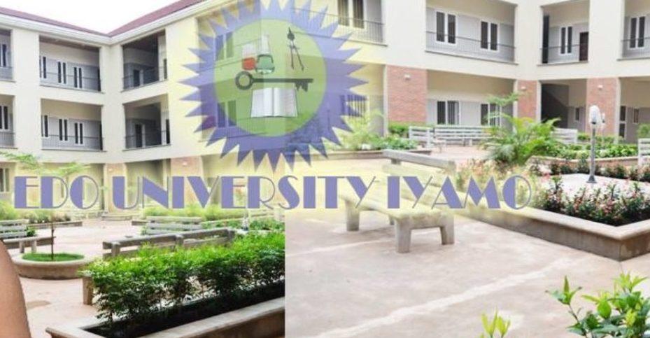Scholarship at Edo University 2020