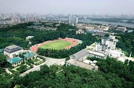 China Government Scholarship