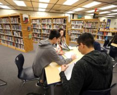 Introduction to Library and Information Studies