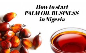 Palm Oil Business In Nigeria.