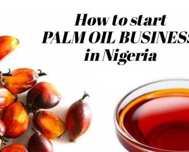 Palm Oil Business In Nigeria.