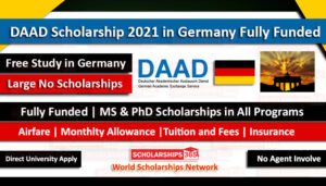 Apply For DAAD  Scholarships