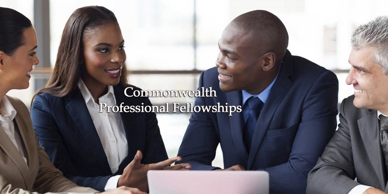 Commonwealth Professionals