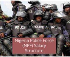 Nigeria Police Force Salary