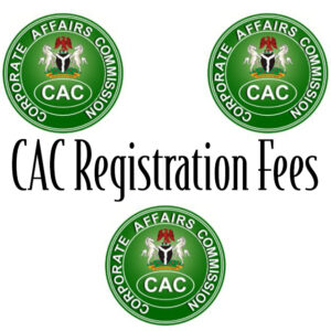 How Much Is Registration Of Business