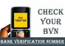 Check BVN On Phone And Online