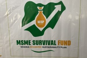 FG MSME Survival Fund