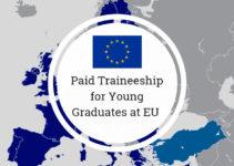EU Traineeship Opportunities
