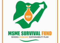 Federal Government MSME Survival