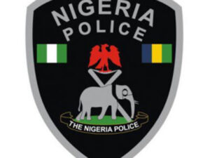 Nigerian Police Sections
