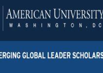 AU Global Leader Scholarship