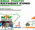 Nigerian Youth Investment Fund