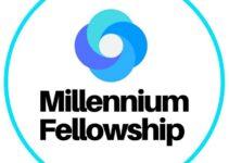 UN Millennium Fellowship