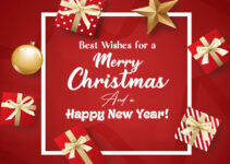Amazing Christmas & New Year Wishes