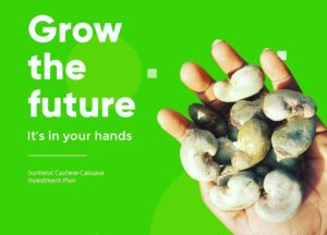 Invest In Agriculture Business