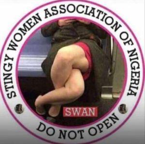 Member Stingy Women Association of Nigeria