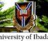 UI DLC Diploma Courses