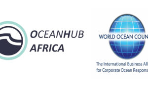 OceanHub Africa Online Acceleration