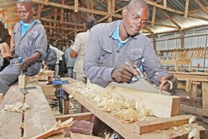 Vocational Entrepreneurship Skills