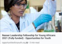 Nasser Fellowship for International