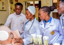 HND Dental Courses and Schools